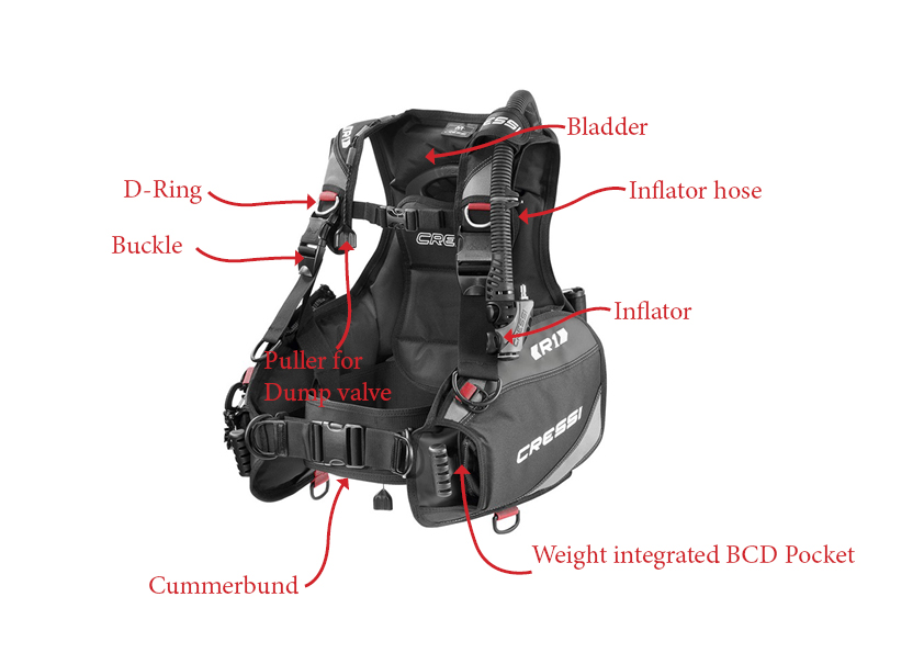 Description BCD Top 10 Best BCD in 2020