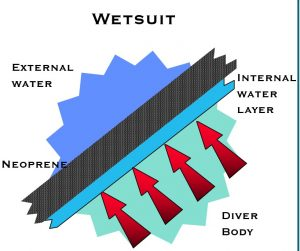 Wetsuit function